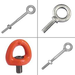 Picture for category Eye Bolts and Eye Nuts